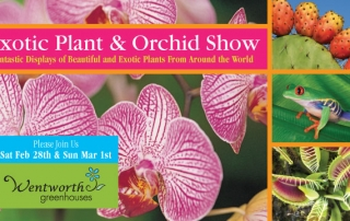 Exotic Plant & Orchid Show Feb 28 & Mar 1, 2015