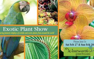 Exotic Plant Show Feb 27 & Feb 28, 2016