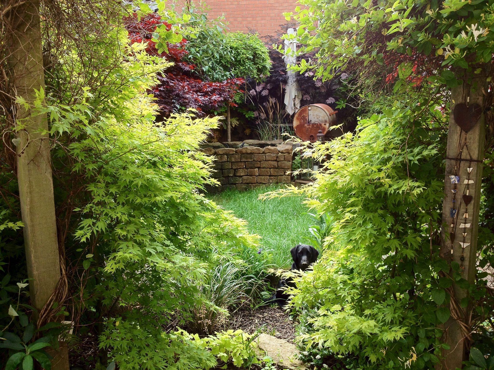 Wentworth Greenhouses Garden Design Studio