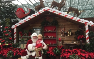 Celebrate the holidays with Wentworth Greenhouses!