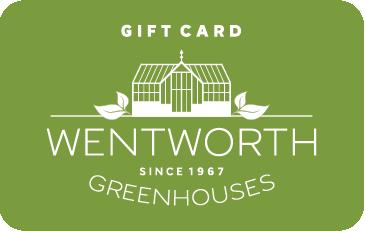 Online wentworth Wentworth Season